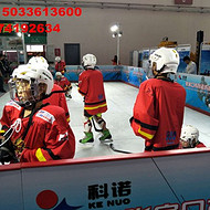 江苏仿真滑冰场滑冰板价格|仿真滑冰板租赁|仿真冰板售价 免押金活动专用