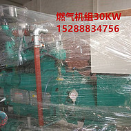 潍坊燃气机组 ZH4100D/1500min柴油机机组 发电机20KW