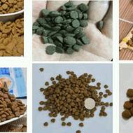 山东汉欧生物科技主要OEM代工犬粮猫粮宠物零食