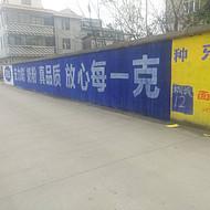 山东济宁刷墙广告 墙体广告5元做宣传优质服务