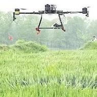 承接湖南省境内水稻玉米等农作物的植保飞防业务