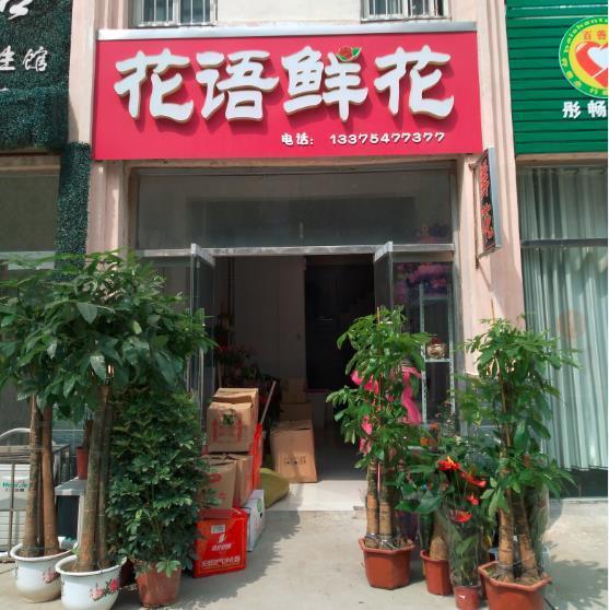 汶上鲜花店 (10)