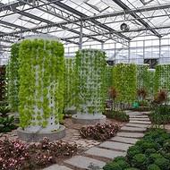 植物无土栽培项目建设 技术指导 方案设计 水培营养液培气雾栽培 无土栽培观光展览科学研究