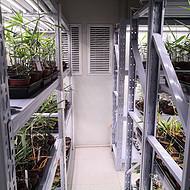 武汉植物生长室项目建设 武汉叶动力方案规划建设实施 植物生长实验室定制设计 **快速