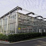 武汉叶动力定制植物智能温室大棚 方案设计规划 项目工程实施建设 智能玻璃温室建造