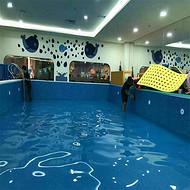 龙岩市儿童钢板游泳训练池幼儿园游泳训练池宠物游泳训练池拼装式游泳训练池游泳馆开店