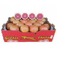 进口南非西柚红心柚进口柚子水果批发海外产地直供一手货源