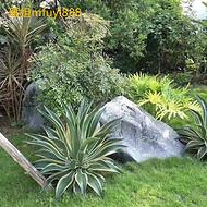 黑色太湖石产地 吨位太湖石 黑山石水钵 定做黑色景观石 大型英德石切片