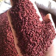 福建红曲米