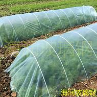 河北润泽可定制玻璃钢纤维棒玻璃钢大棚骨架