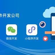 B2C单商户商城小程序app系统开发