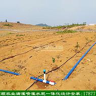 广西本地先进技术企业 果园滴灌喷灌水肥一体化工程一带一安装