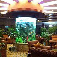广州鱼缸设计、天河区亚克力鱼缸制作、亚克力鱼缸定制