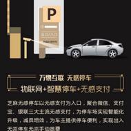 无感停车支付系统搭建 OEM贴牌  报备微信、支付宝、银联API服务商