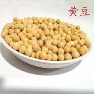 农产品黄豆JH-1型纯洁饱满货真价实网络直销