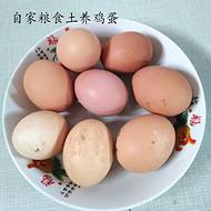 农家自产粮菜做饲料散养土鸡蛋环保绿色
