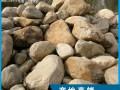 天然园林景观石