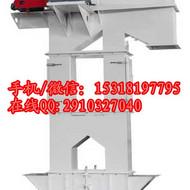 宝鸡石灰渣链斗式输送机  高效率瓦斗式垂直上料机