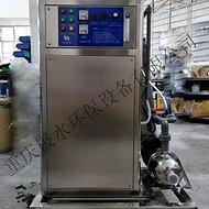 10克空气源/氧气源臭氧发生器