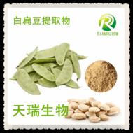 白扁豆提取物 厂家现货供应