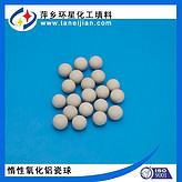 净化装置氧化铝球规格φ25普铝瓷球高铝瓷球惰性瓷球