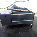 海鲜贝类清洗机 海蛎子清洗机 扇贝清洗机佳坤专业生产厂家