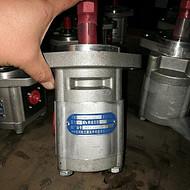 供应四川长江液压件有限责任公司齿轮马达