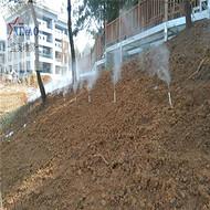 河提喷雾造景设备  降温除尘雾森系统