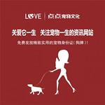 为什么说点点宠物文化的资讯网站是关注宠物一生的生活服务平台?