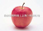 果蜡|吗啉脂肪酸盐果蜡|柑桔保鲜|美国仙农,品格保障|被膜剂