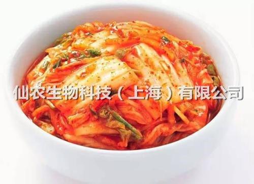 泡菜发酵剂5
