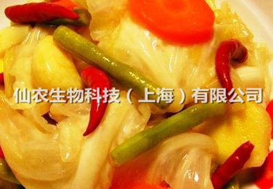 泡菜发酵剂4