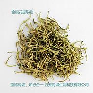 绿茶提取物 20-98%茶多酚