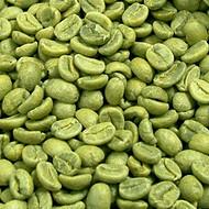 绿咖啡豆提取物 50%绿原酸