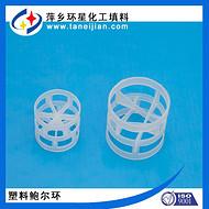 出口订单合成氨项目填料HDPE鲍尔环塑料聚乙烯鲍耳环