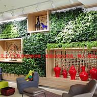 禧雅世家-垂直绿化,绿植墙,无土栽培植物绿墙,室内植物墙,