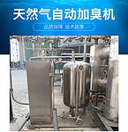90L自动双泵天然气加臭机 燃气加药装置 燃气加臭机