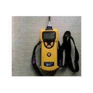 美国华瑞PGM-1600可燃气有毒气体检测仪