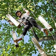 历奇探险-丛林飞越-Tree Top-树上训练-树上拓展