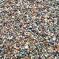 2-3公分鹅卵石批发价格_鹅卵石多少钱一吨?_渝荣顺矿产!