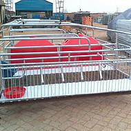 河北自动化养猪设备厂专业生产复合板母猪产床母猪分娩栏