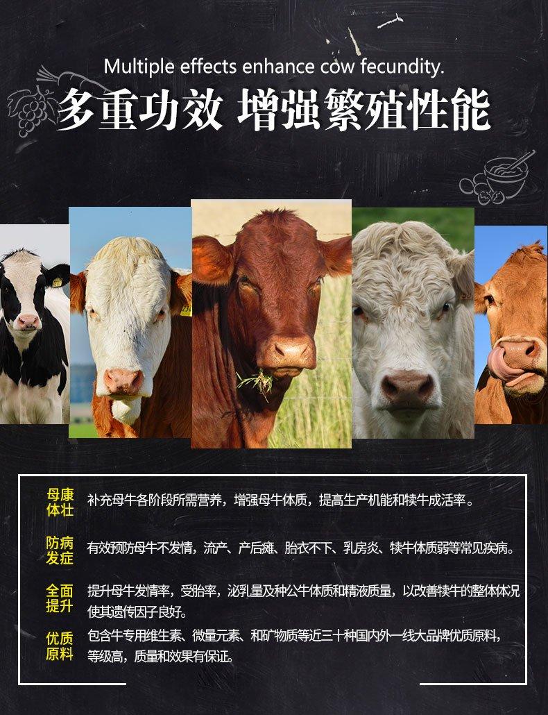 """母牛专用预混料""""母牛宝""""130元袋 20kg 可以拌1000斤精料④"""