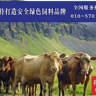 预混料品牌、厂家哪个好   饲料供应商找哪个  北京利斯特值得你信赖
