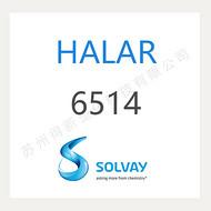 HALAR 6514 ECTFE 苏威 特氟龙涂料