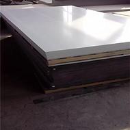 专业生产 旱冰场专用 超高分子量聚乙烯地板 耐磨自润滑