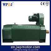 王牌电机 Z4系列直流电动机 Z4-315-22 225/250/315KW