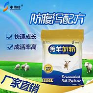选用优质的羔羊奶粉代乳粉提高小羊的成活率