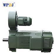 王牌电机 Z4直流电机 Z4-400-21 180/200/260KW