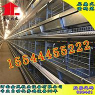 金凤鸡笼的自动化养鸡设备有哪些优势