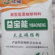 厂家销售大豆磷脂粉 乳化均衡油粉厂家  大豆磷脂厂家